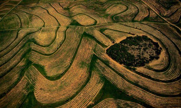 La Tunisie vue du ciel par Yann Arthus-Bertrand