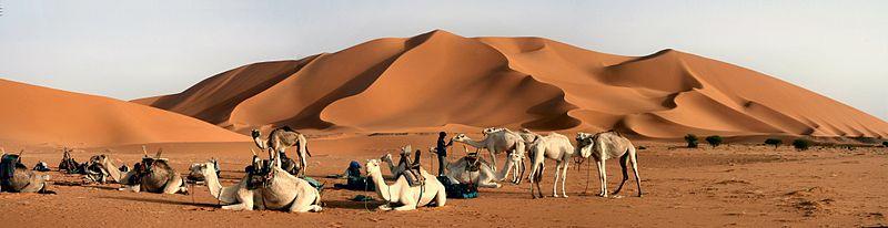 Sahara & Oasis