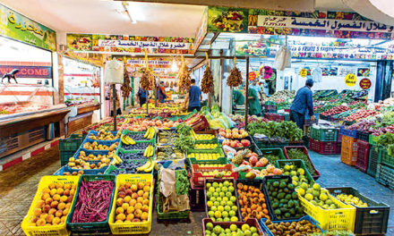 Tunisie gourmande sur France 24